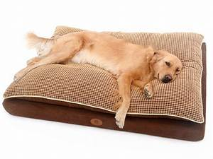 the 30 best large dog beds for your large breed dogs With where to buy dog beds