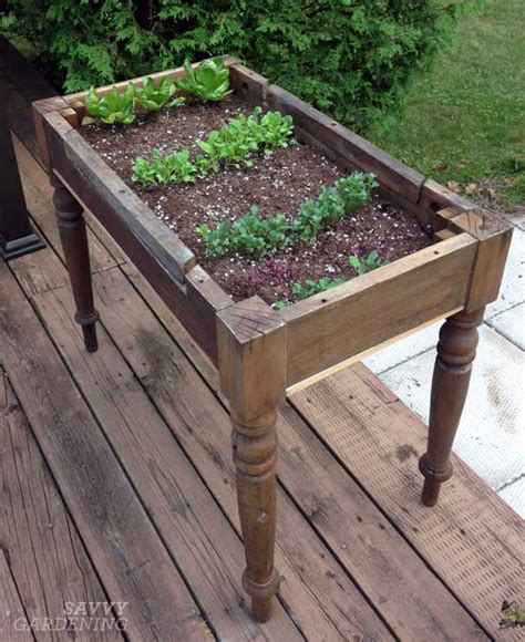 raised garden table loving my lettuce table