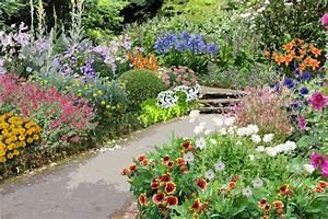 Plantes Vivaces Pour Massif : cr er un jardin en sol calcaire ~ Premium-room.com Idées de Décoration
