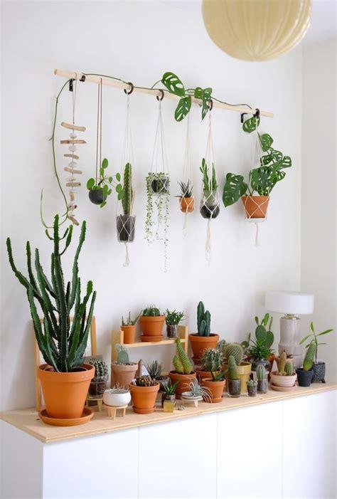 diy hanging plant wall  macrame planters hanging