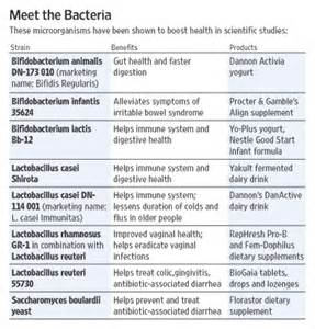 Different Types of Strains Probiotics