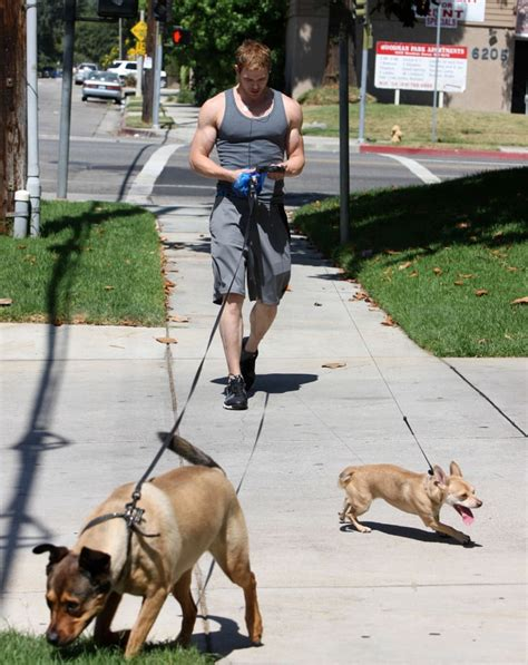 Pictures of Kellan and the Dogs | POPSUGAR Celebrity Photo 6