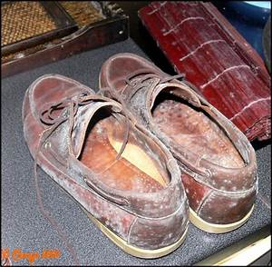Nettoyer Cuir Moisi : chaussures moisies placard ~ Medecine-chirurgie-esthetiques.com Avis de Voitures