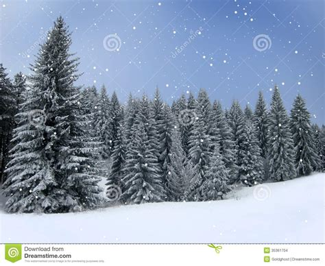winter christmas theme winter holiday theme background stock images image 35361704