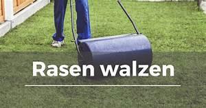 Rasen Walzen Wann : rasen walzen garten schule ~ Markanthonyermac.com Haus und Dekorationen