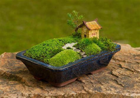 สวนมอส   miniature gardens   สวนน้อยๆ สวนแบบเซ็น และ สวน