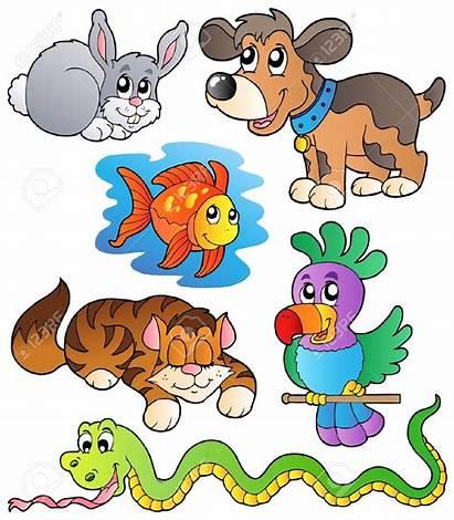 Pet Clip Clipart Cliparts 1135 1300