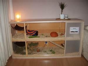 Meerschweinchen Gehege Ikea : meerschweinchen in not druckvorschau eigenbau umbau tips gesucht ergebnisse seite 1 ~ Orissabook.com Haus und Dekorationen