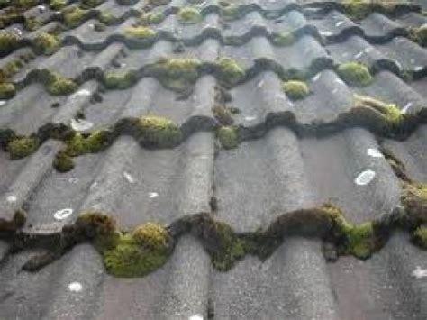 entreprise de nettoyage pour votre toiture en tuile beton