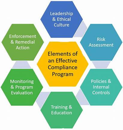 Compliance Program Effective Elements Programs Education Requirements