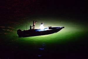 Night Fishing: Wilfried HKG: Galleries: Digital ...