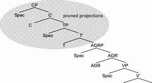 A Pruned Syntactic Representation According To The Tree