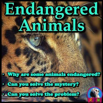 endangered animals powerpoint activities  ryan