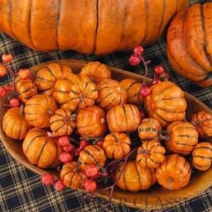 Assorted, Mini, Pumpkins, 24