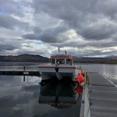 Boat Trip Oban by Etive Boat Trips Oban 2018 All You Need To Before