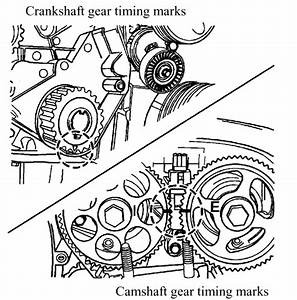 2004 Chevy Aveo Timing Belt Diagram