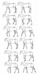 Sketchbook Original  How To Animate Horses  U2013 Monika Zagrobelna