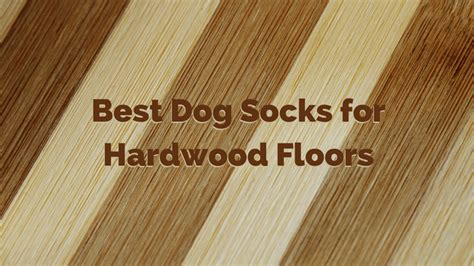 Best Dog Socks for Hardwood Floors   How to Protect Your