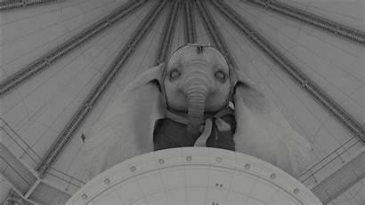Dumbo Elephants Behind Scenes Vfx Fly Action