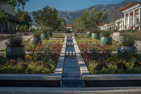 surprises   huntington garden design