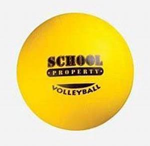 School Properties Volleyball Supasport