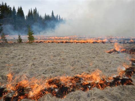prescribed burn planned  north fork glacier national