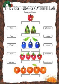 hungry caterpillar worksheets   exercises