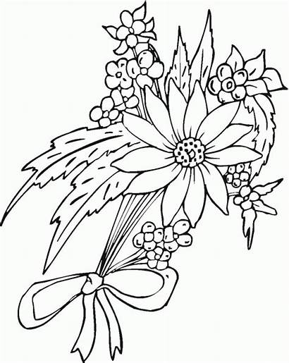 Flower Flowers Coloring Pages Pretty Printable Drawing
