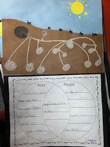 Ant  People Venn Diagram With Art