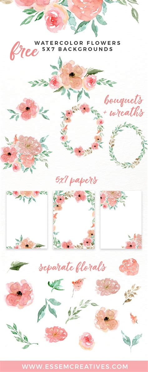 modern decor free watercolor flowers clipart floral wreaths 5x7 borders