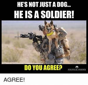 Search Soldiers Memes on me.me