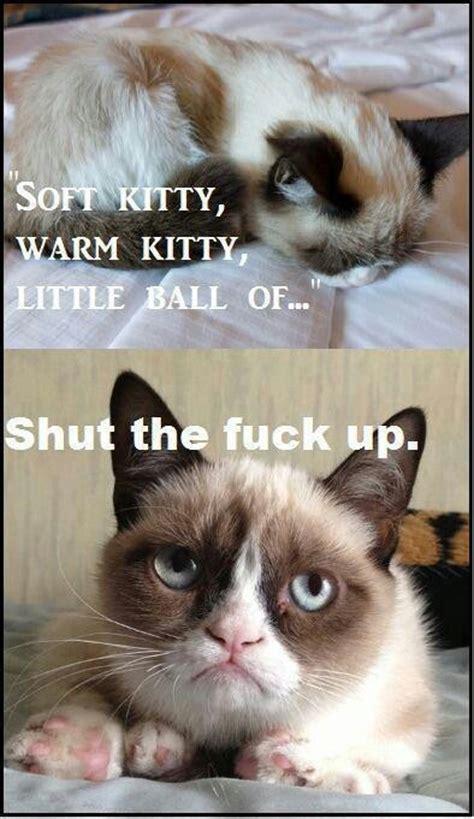 Soft Kitty Meme - grumpy cat soft kitty meme memes funny pics pinterest