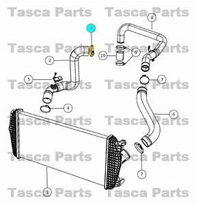 New Oem Mopar Turbo Resonator Hose Clamp Dodge Sprinter