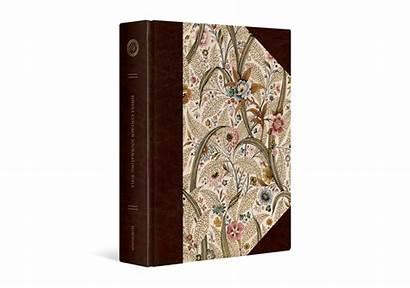 Bible Esv Journaling