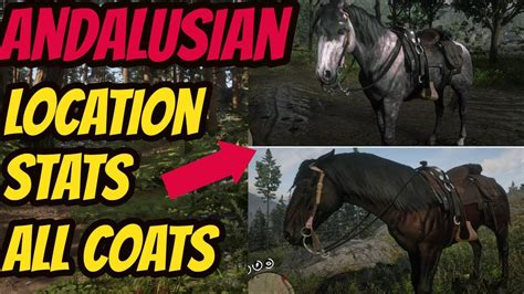 redemption dead andalusian horse location coats stats guide