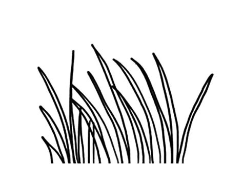 Coloring Grass by Plants World Grass Coloring Pages Color