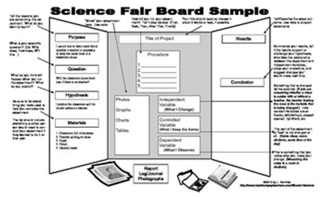 science fair board template science fair display board sle tpt