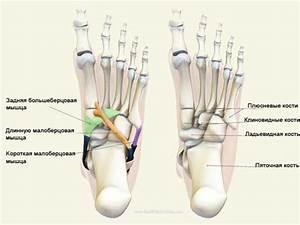 Крем для мышц и суставов после травмы