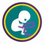 Birth Children Defects Protect Pesticide