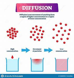 Diffusion Vector Illustration  Labeled Educational