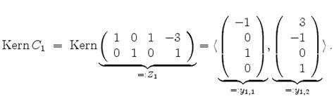 mathematik  lexikon ein homogenes lineares system