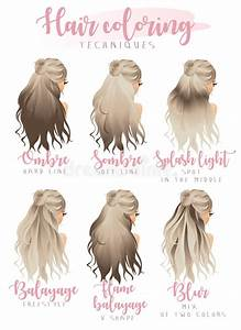 Hair Coloring Techniques Stock Vector  Illustration Of