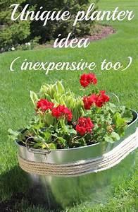 Unique, Planter, Idea, Inexpensive, Too