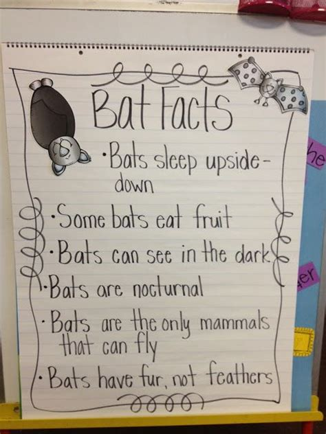 11 best images about preschool facts on cover 289   fefaf101b53b83e02fd1b6fe28af327e facts about bats bat facts
