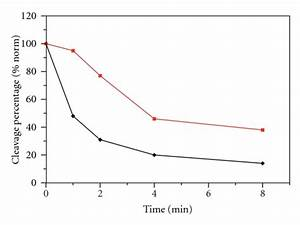 A  Time Course Of The Religation Experiment Between The