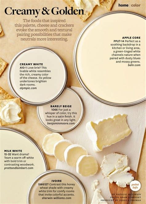 paint palette creamy and golden inspirational design