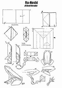 Origami Wet Folding Diagrams