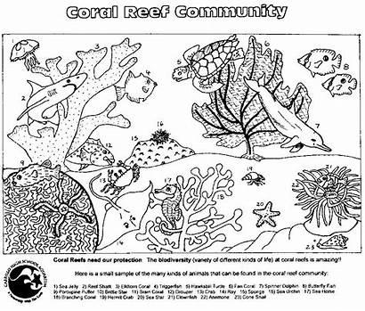 Coral Reef Coloring Pages Ocean Worksheets Community