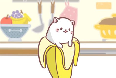 anime japanese cat japanese bananya tells the tale of a cat who