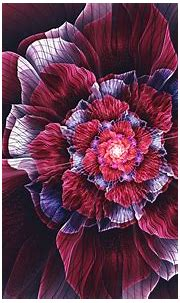 fractal, Abstract, Fractal Flowers, Flowers, Symmetry ...